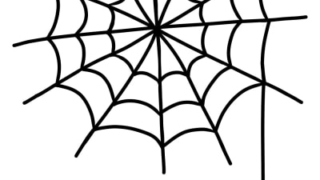 蜘蛛の巣,掃除